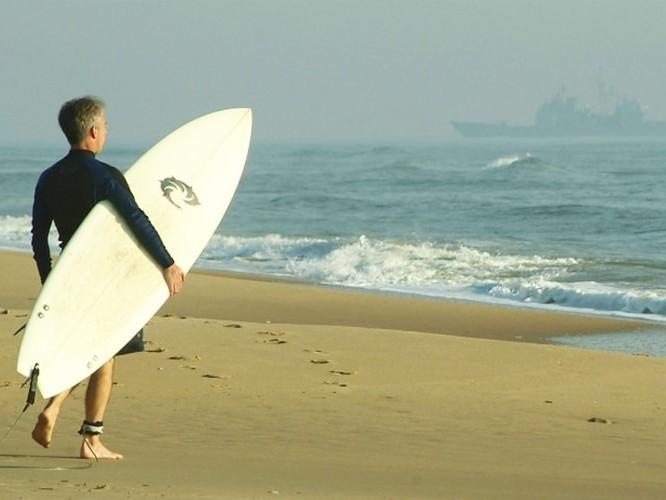Fish-Surfboard