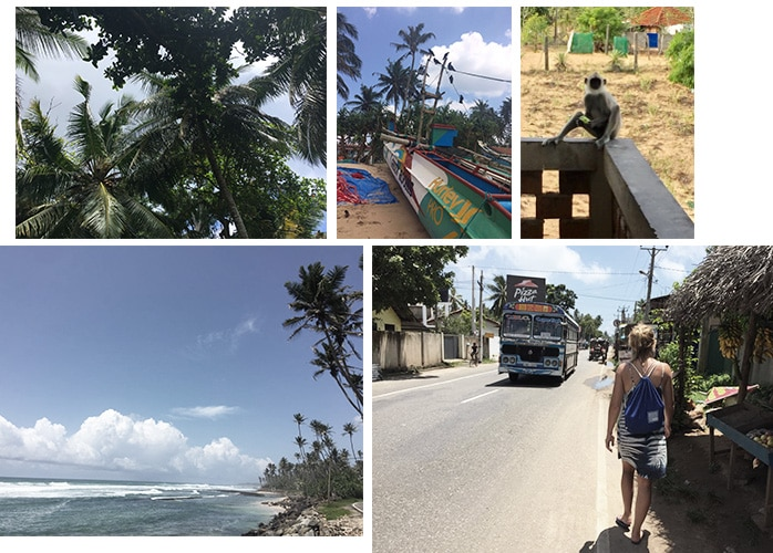 Sri Lanka Surf Bilder