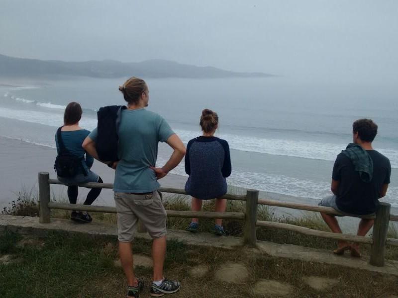 Surf Spot Check
