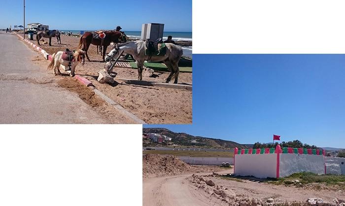 Marokko Surftrip Tipps